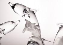 Dolphin on the wave stiklo gaminiai