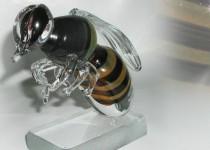 Bitė I stiklo gaminiai