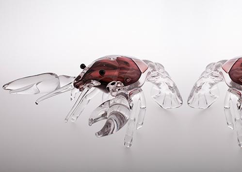 stiklo gaminiai Cancer I